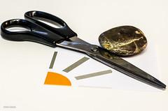 Paper, Scissors Stone! (BGDL) Tags: rock stone paper florida scissors odc niftyfifty lakewoodranch nikond7000 bgdl lightroom5 nikkor50mm118g