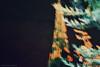 DSC_0774 (Mashael88) Tags: pictures flowers black mountains flower tree love nature beauty logo photography lights photo flickr photographer darkness mesh farm theend m moment charming شمس ahmed saudiarabia mash pandemonium the photograghy جمال تصوير ذكريات طبيعي تصويري السعودية اشجار مزرعة ظلام شروق ساحر الشمس اشياء شجر طبيعه مجموعة نبات مزرعه لحظات فوتوغرافي enchantingbeauty احتراف مشاعل mashael ميش فوتوغرافية تصويرفوتوغرافي فوتوغرفي mashae theeffectof مشاعلاحمد mashaelahmed مصورفتوغرافي النخلتان مطارالرياض ،mashael،mashael ahmed،photo مسش thebeautyofdocile الطيبعه