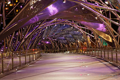 20140505-04-Helix walkway at night.jpg (Roger T Wong) Tags: night reflections singapore purple walkway helix 2014 marinabay canon24105f4lis canonef24105mmf4lisusm canoneos6d rogertwong