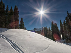 tracks in the sun Trout Lake (maryannenelson) Tags: trees winter sun ski mountains colorado tracks sunburst troutlake