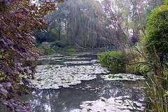 The Water Garden (oxfordblues84) Tags: trees france garden europe waterlily watergarden normandy giverny frenchimpressionism thewatergarden academiedesbeauxarts roadscholar euredepartment claudemonetgarden foundationclaudemonet roadscholartour roadscholarfieldtrip communeineuredepartment