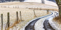 Country Lane in Winter (travelphotographer2003) Tags: road winter usa snow fence solitude farm country westvirginia lane serene countryroad appalachianmountains countryliving alleghenymountains beautyinnature webstercounty