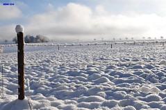 003 Winter in der Eifel (modekopp) Tags: schnee winter snow frozen frosty frosen gooutside germanywinter fantasticnature frozensnow frozeninsnow eifelgermany amazingphotographs eifelwinter winter20142015 eifelwinter20142015 germanylandscapedecember2014 modekopp