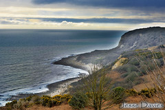 The Mist WM (Jesse Davies) Tags: uk trees sea cliff color beach misty landscape sussex moody vibrant side stormy hills edge views hastings viewpoint hdr fairlight