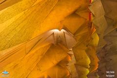 La Sagarada Familia (ChrisKarun) Tags: barcelona travel trees light espaa abstract color colour building art tourism church colors beautiful familia architecture temple la licht spain arquitectura nikon europa europe colours cathedral interior basilica bcn iglesia kirche tourist catalonia symmetry ceiling fisheye chiesa decke gaudi gaud architektur catalunya pillars sagrada glise f28 antoni hdr barcellona catalua spanien farben gaud sulen espanya katalonien nikon50mm nikon70200mm nikon2470mm nikon1024mm