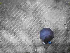 Chuva no Parque Tanguá (Eduardo PA) Tags: parque windows paraná nokia phone no chuva curitiba microsoft wp 1020 tanguá lumia pureview