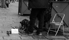 Dtresse. Paris, mars 2016 (Bernard Pichon) Tags: paris france ledefrance 75 fr sdf bpi760