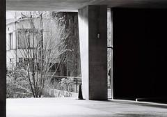 (lemonhats) Tags: street japan walking geometry iso400 35mmfilm m42 vintagecamera kodaktrix spotmatic yoyogi manualfocus lightandshadow f4 telephotolens yellowfilter classiclens 160 screwmount classiccamera filmphotography printfilm primelens shootfilm tokyoto filmisnotdead kodakd76 asahipentaxsp 105mm28 smctakumar analoguephotography homedevelopment contrastfilter filmisalive mechanicalslr filmforever filmcommunity legacyphotography fpper believeinfilm kodakforever blackandwhite marumimcy2 supermulticoattakumar28105