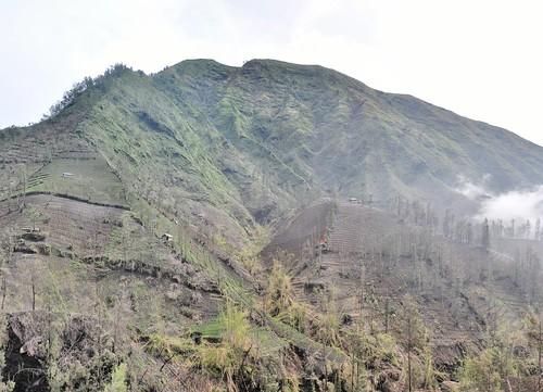 mont bromo - java - indonesie 39