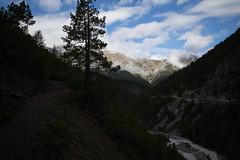 near Punt la Drossa @ Parc Naziunal Svizzer (Toni_V) Tags: alps schweiz switzerland europe suisse hiking 28mm rangefinder mp alpen svizzera engadin wanderung 2016 graubnden grisons svizra parcnaziunalsvizzer leicam unterengadin grischun elmaritm engiadinabassa schweizerischernationalpark messsucher 160618 puntladrossa typ240 toniv m2400369