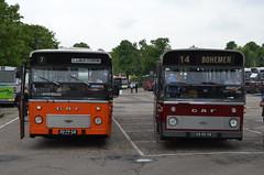 11.06.2016 (VIII); 50 jaar standaardbus (chriswesterduin) Tags: hbm htm