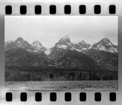 2016-07-02-0069 (Cosmic Ray's) Tags: blackandwhite mountains 35mm kodak olympus scanned vintagecamera tetons exposed grandtetonnationalpark scannednegative notfake exposedfilm epsonv600