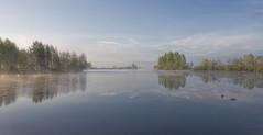 Misty River (Jyrki Liikanen) Tags: morning earlymorning calm serene peaceful riverscape bluesky mist fog haze water waterscape waterreflection reflections reflection nikonphotography nikon