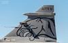 40 (Paul.Basque) Tags: zaragoza 40 puma zaz squadron gripen 591 tailart lezg jas39c hungarianairforce zaragozaairbase specialtail ntm16 natotigermeet2016