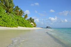 Jumeirah Dhevanafushi_0433 (Simon_sees) Tags: travel vacation holiday island tropical maldives luxury 5star jumeirah dhevanafushi