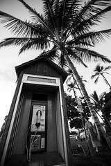 IMG_0479.jpg (Michele Stocco) Tags: sunset hawaii maui lahaina 2016