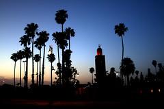 Koutoubia Mosque at sunset (marianovsky) Tags: sunset palms minaret mosque morocco marrakech koutoubiamosque marianovsky