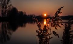 Sunset (Delbrckerin) Tags: sonnenuntergang sunset nikond90 nikkor18200mm