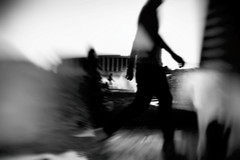 No focus (BlumBlu) Tags: bianco nero monocromatico sfocato movimento sfuocato street photography black white mono bw filter effects light movement hazy blurred action