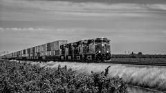 BNSF 7636 East (lennycarl08) Tags: bnsf burlingtonnorthernsantafe burlingtonnorthernsantaferailroad stocktonsub