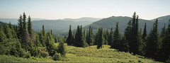Carpathians 2016 (25-27 June) (a.khandogin) Tags: hasselblad hasselbladxpan hasselblad454 hasselblad45mmf4 kodak kodacolor kodakkodacolor200 outdoor mountains carpathians ukraine film