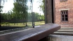 La finestra di fronte (carlini.sonia) Tags: sonia auschwitz polonia deportati olocausto guerra sterminio persone gente uomini donne bambini finestra riflesso baracche baracca