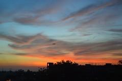 Myraid Hue (Anshul Roy) Tags: sun sunlight sunrise nikon hue nikond3200 d3200