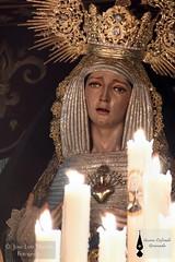 Consolacin Granada (14) (Guion Cofrade) Tags: santa religion iglesia andalucia granada semana virgen palio imagen pasion cofrade procesin pasin cofradia devocin hermandad besamanos
