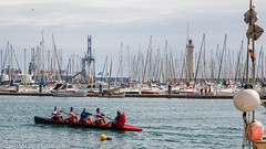 160403_lan_her_set_2915.jpg (f.chabardes) Tags: france languedoc ste vieuxport hrault avril 2016 2t
