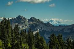 IMG_0179 (shaqhall89) Tags: trees mountain canada green nature beauty landscape natural hiking mount rainier serene blueskies mountbaker layered greatoutdoors mountainridge bakermountain mountainrainier