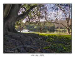 Hyde Park, Perth (JChipchase) Tags: trees winter lake leaves nikon australia perth d750 hydepark