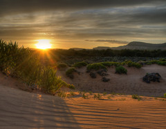 Coral Pink Sand Dunes (Habub3) Tags: park travel las pink vegas sunset usa sun holiday nature coral landscape sand reisen nikon sonnenuntergang dunes urlaub hill natur pascal landschaft sonne hdr vacanze d90 2013 habub3