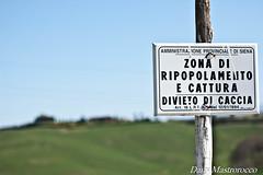 DSC_0048 (Daniela Mastrorocco) Tags: colline caccia divieto senesi