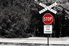 Signs, signs........ (Triple_B_Photography) Tags: red summer hot sign blackwhite crossing tram australia stop perth edit bushland convert whitemanpark elementsorganizer