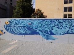 mural monday (sftrajan) Tags: sanfrancisco blue mural whale temporary yerbabuenagardens plywood missionstreet thirdstreet flickrandroidapp:filter=none