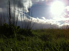 (mr_stru) Tags: sun clouds cycling fife flare uploaded:by=flickrmobile flickriosapp:filter=nofilter