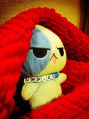 Comfy Grumps (Dreaming Magpie) Tags: red anime cute comfortable cat stuffed feline sleep manga adorable kitty plush special fave stuffedanimal blanket kawaii plushie aww neko comfy wellloved grumples