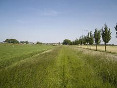 monnickendam-kwadijk-volendam185 (w.wegman) Tags: tram route blauwe volendam edam monnickendam kwadijk