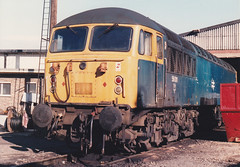 56011 2nd Nov 1986 Leicester (Ian Sharman 1963) Tags: nov train grid diesel leicester engine loco class 2nd depot 1986 56 56011