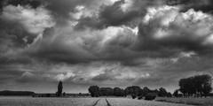 Elst Landscape HDR B&W (Lou-bella) Tags: landscape thenetherlands hdr gelderland elst sonya57 sony18135mm