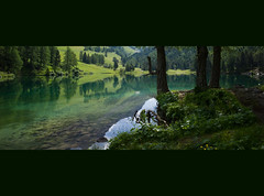 50 shades of green (Toni_V) Tags: green reflections schweiz switzerland suisse 28mm svizzera mountainlake bergsee graubünden grisons svizra 2013 grischun elmaritm laidapalpuogna palpuognasee ©toniv 130724 leicam9 l1013389