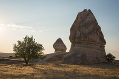 Two Rocks and a Tree (Brian Hammonds) Tags: travel light shadow summer vacation sky holiday hot color tourism rock stone contrast trekking trek turkey dark balloons asian photography flying photo nikon asia photographer tour view desert image hiking air exploring sightseeing balloon flight picture floating tourist east full adventure explore fairy photograph frame sight traveling float exploration touring chimneys turkish cappadocia formations greme goreme d600 upvertical
