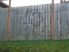 13 (northwestgangs) Tags: seattle graffiti kent southpark renton gangs crips rainiervalley ganggraffiti whitecenter surenos gangsterdisciples