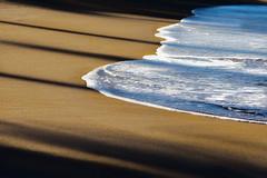 At Ocean's Edge (Sandra's Weeds -Away-) Tags: ocean water waves shadows sandy explored christmas2013 sandrafelt exploredjan520148 sandravfelt