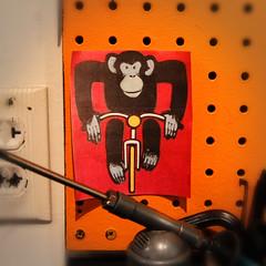 PBW_Shop_09 (SenebDesign) Tags: california road mountain bike bicycle shop monkey cycling store monterey track time parts rad wheels workshop frame works accessories custom build tri peninsula triathlon trial cyclocross timetrial frameset seneb