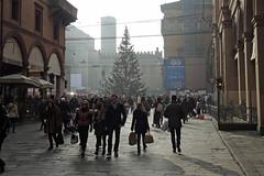 Bologna - Via dell'Indipendenza (Arco Ardon) Tags: italy italia bologna itali emiliaromagna viadellindipendenza