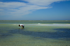 Explorer (DugJax) Tags: gulfofmexico tampabay florida ami fl annamariaisland efs1755mmf28isusm canonrebelt2i