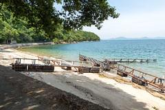 (GenJapan1986) Tags: travel sea japan island    okayama 25mm setoinlandsea  2014   nikond600 zf2   manabeisland distagont225