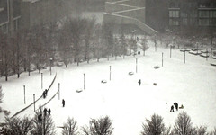 Chicago, 2015 (gregorywass) Tags: park winter people bw snow chicago east lakeshore february blizzard 2015