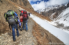Trekking In the Himalayas, Thorung Phedi, Annapurna Circuit, Nepal (Feng Wei Photography) Tags: travel nepal mountain snow color horizontal trek landscape asia outdoor scenic hike remote lonely annapurnacircuit annapurna himalayas trekker manang gandaki thorungphedi annapurnahimal annapurnaconservationarea